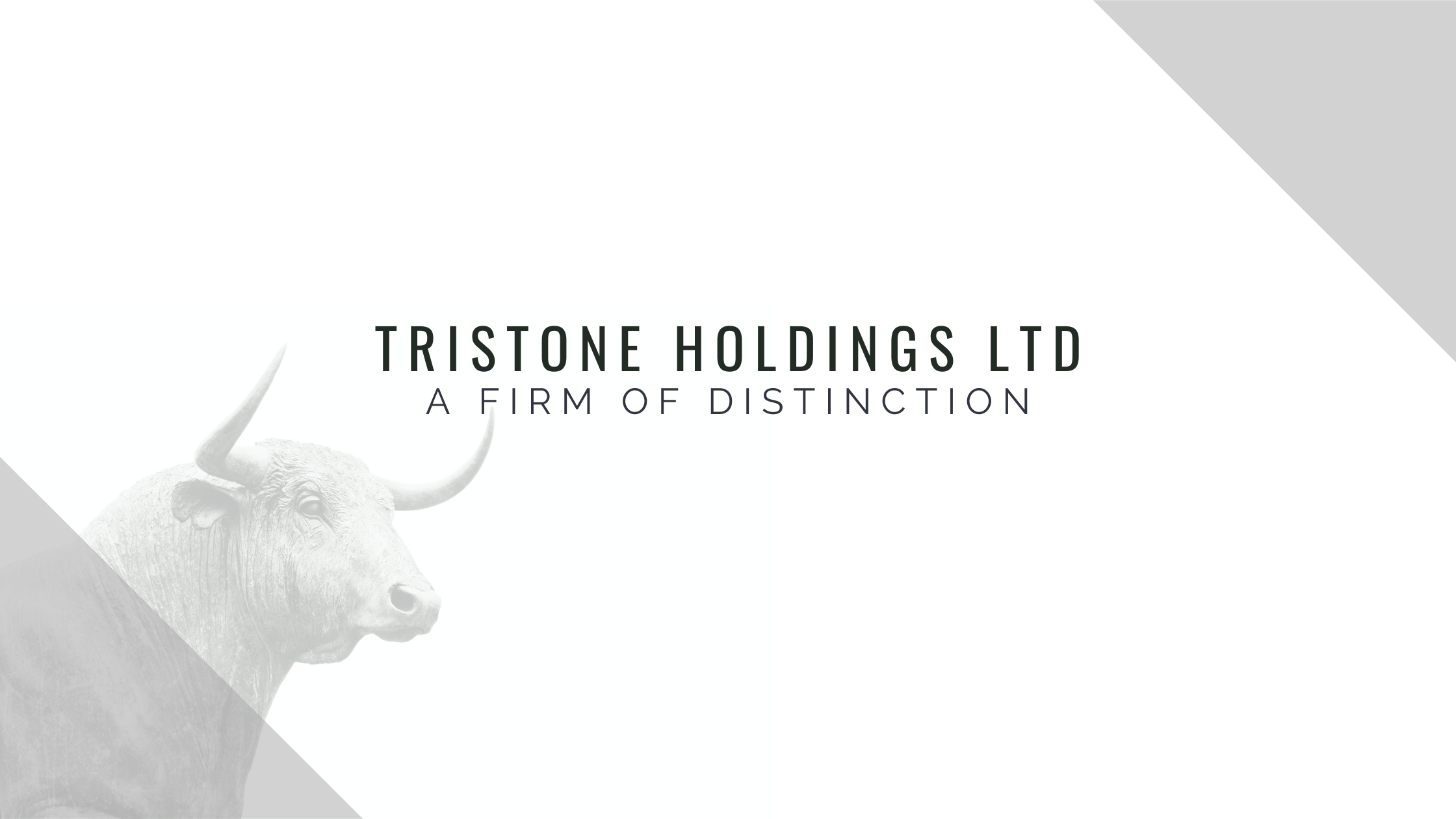 TriStone Holdings Ltd - A Firm Of Distinction.